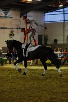 Ferienfreizeit – Akrobatik neben und auf dem Pferd